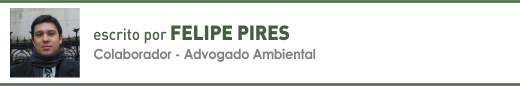 Clique aqui para ler mais sobre artigos de Felipe Pires