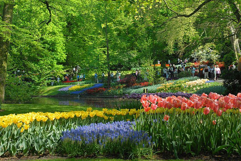 flores cidade jardim:Keukenhof – O maior jardim de flores do mundo