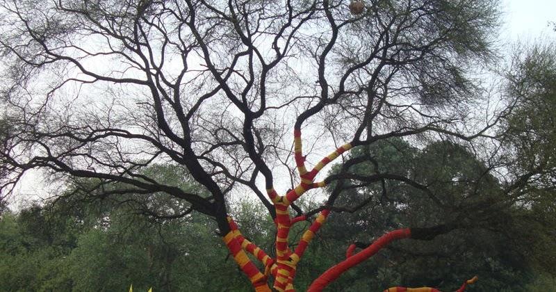 Nature S Soul Delhi