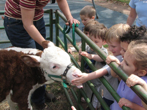 Petting farm business plan