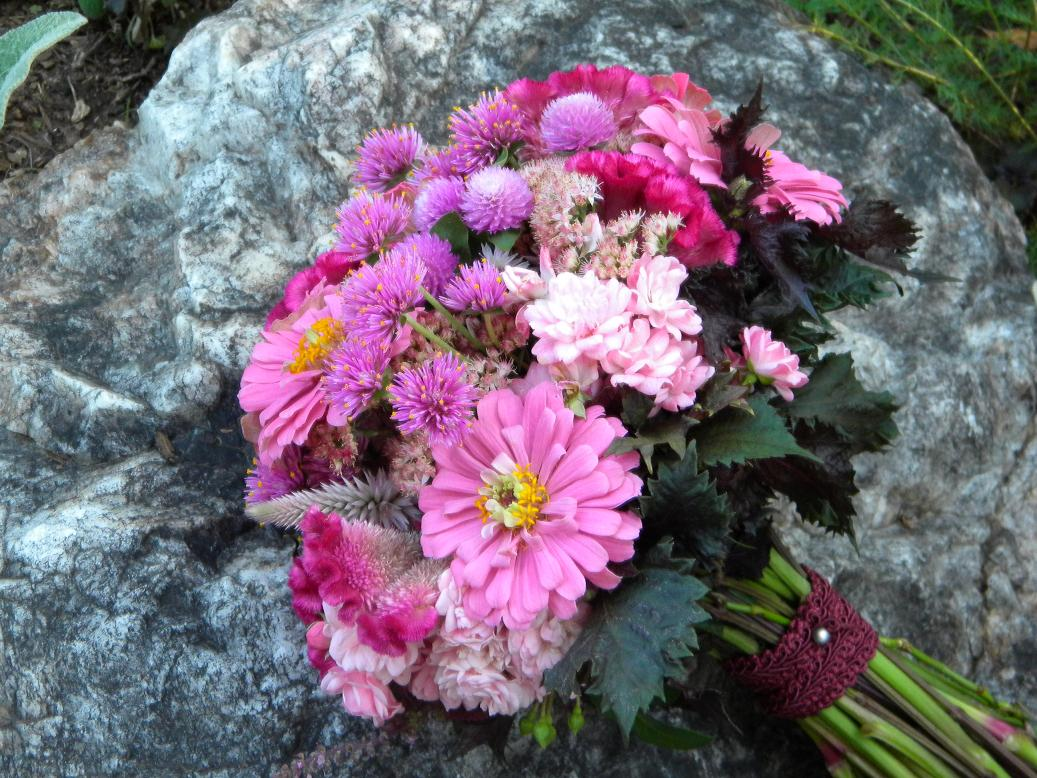 Wedding flowers from springwell summer bouquet pretty in pink these are some of the late summer flowers that are blooming now zinnias crested and wheat celosias fairy roses audray and fireworks gomphrena mightylinksfo