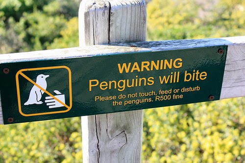 Penguin Updates - Panda 4.0 Is Hitting Sites formerly Penalized - Vancouver