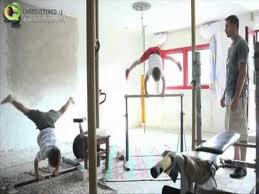 Training in the gym with their father