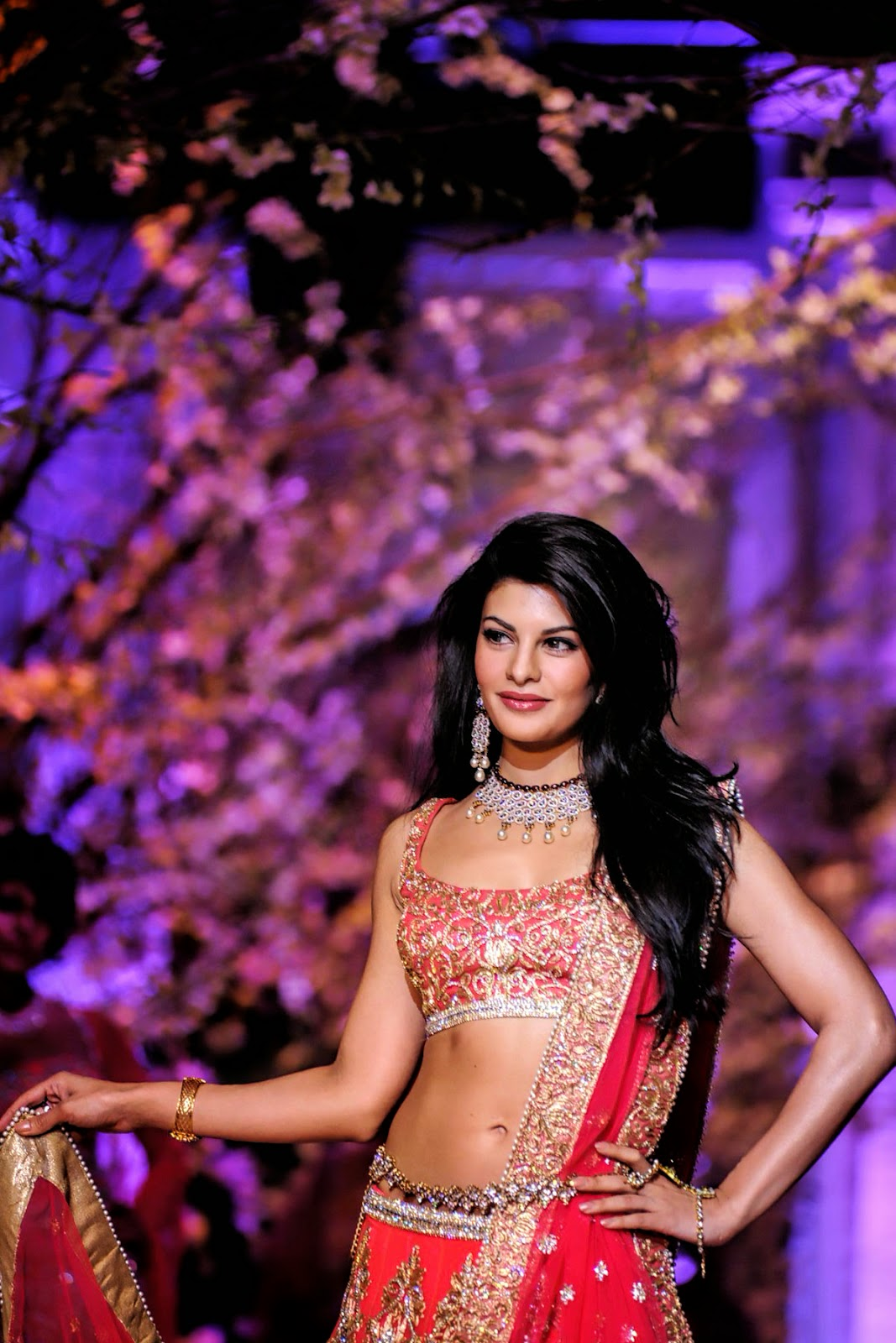 india bridal fashion week 2014 wallpapers | hd wallpapers (high