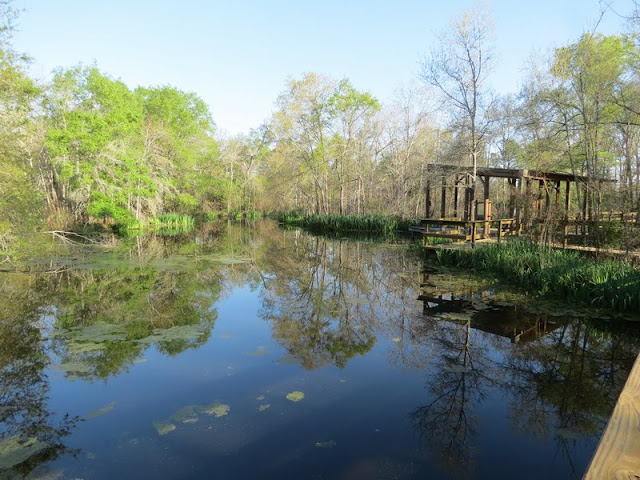 Covered observation deck at Armand Bayou Nature Center.