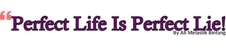 Perfect Life Is Perfect Lie!