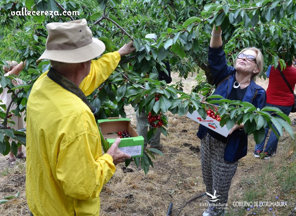 Viajeros disfrutan de su experiencia de Agroturismo