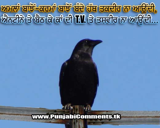 New Funny Punjabi Status Quotes Comments Comment Cool