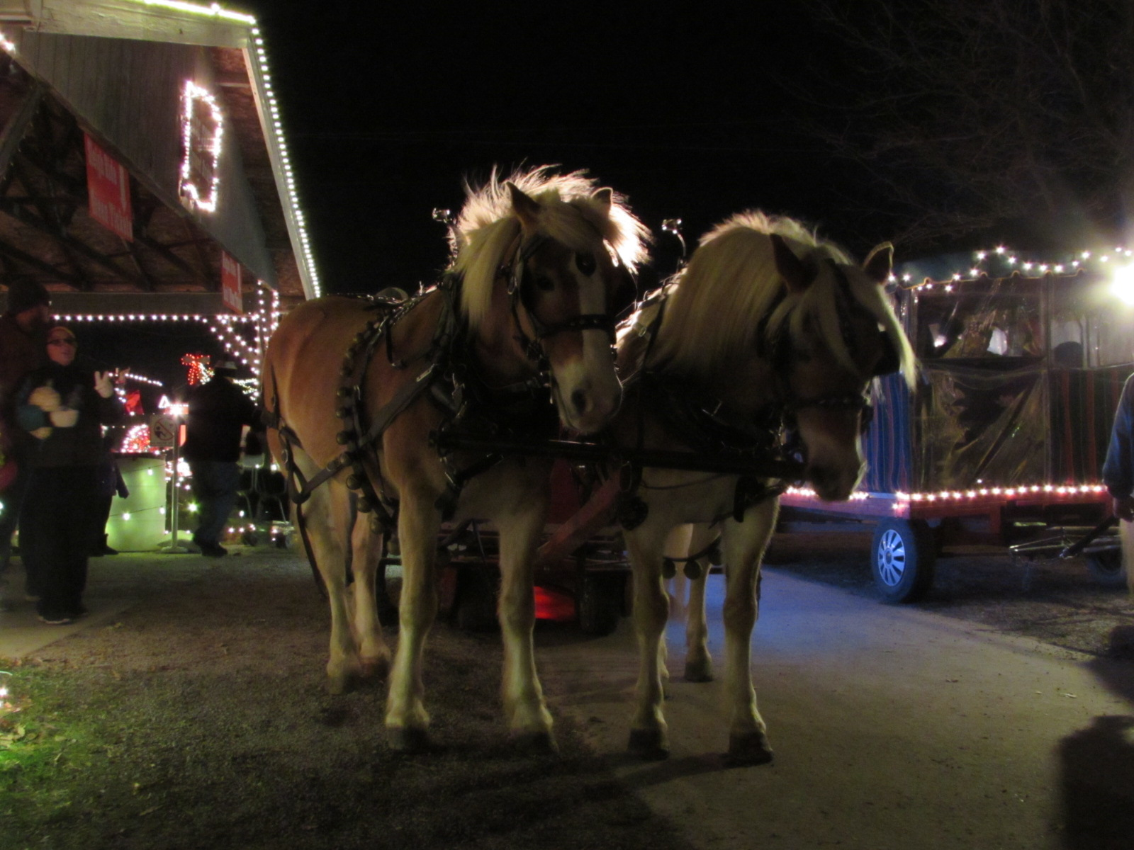 On Friday We Got To Spend The Evening At Overlys Country Christmas Westmoreland County Fairgrounds In Mt Pleasant PA