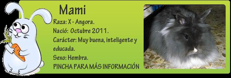 http://mirada-animal-toledo.blogspot.com.es/2013/03/mami-coneja-usada-para-criar.html
