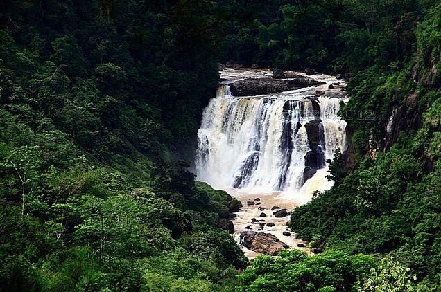 © http://www.flickr.com/photos/erizal/6914437245/