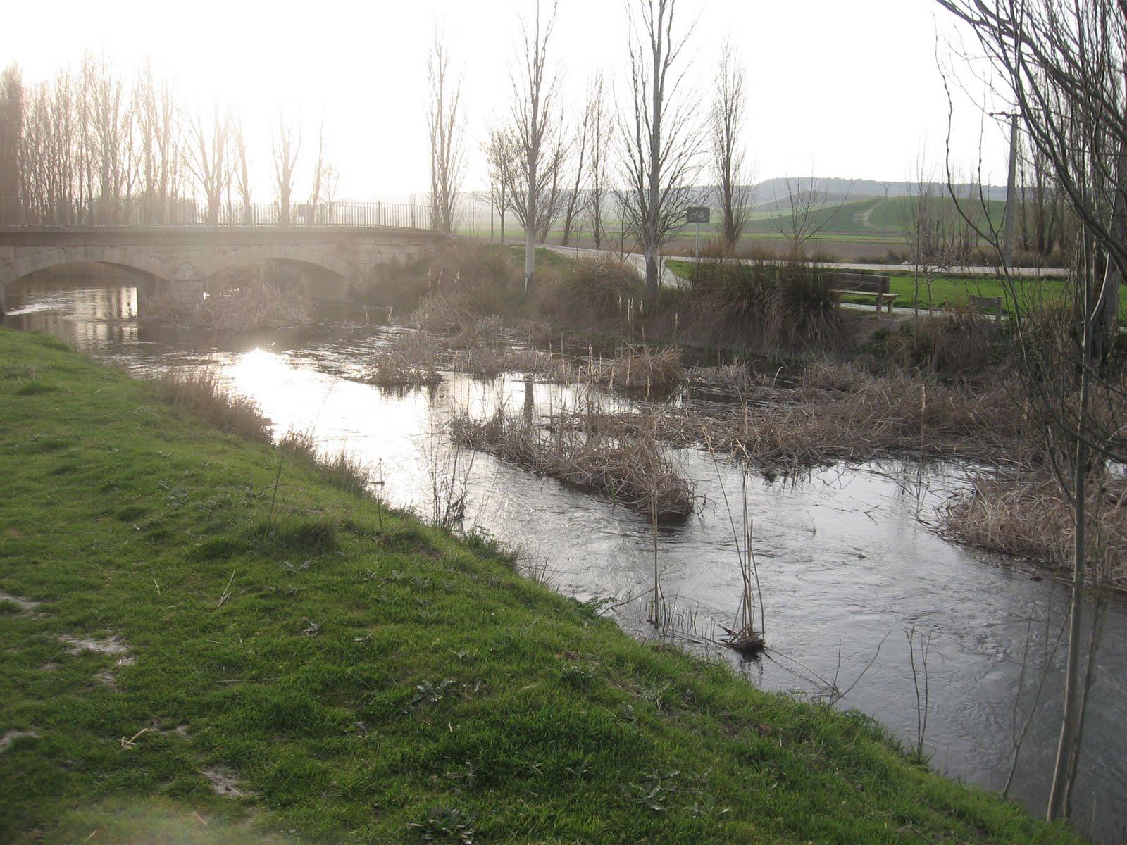 Rios y truchas rio esgueva tramo en reguimen especial for Piscina rio esgueva