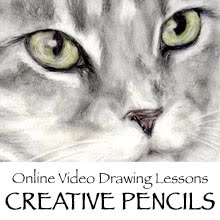 Learn to Draw with Me