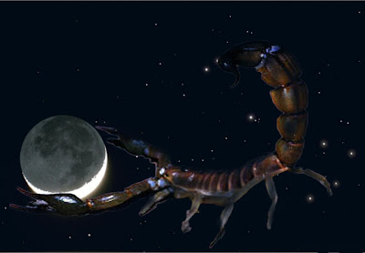 Луна, Скорпион, Звезда