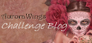 aurora wings challenge blog