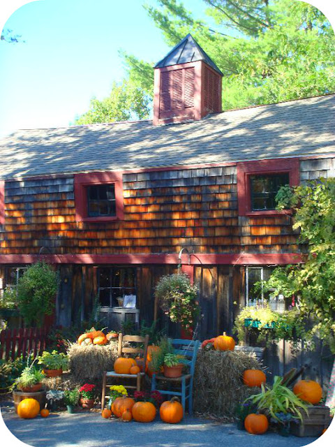 Pumpkins at Pickity Place