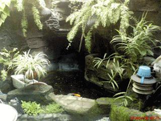 kolam hias minimalis   blog interior rumah minimalis