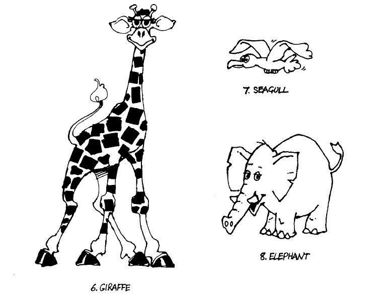 Kumpulan Gambar Binatang, Seagull, Giraffe, Elephants