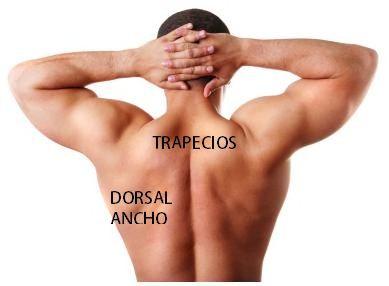 La osteocondrosis el entumecimiento de la parte izquierda del cuerpo