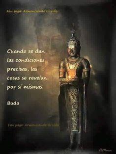 Según Buda, cuando se dan las condiciones precisas,