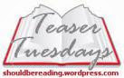 Teaser Tuesdays