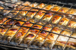 grillitud skumbria