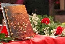 """Lançamento do Livro """"Âmbar e Mel - Janelas de Poesia"""" da Chiado Editora, NOV 2011"""