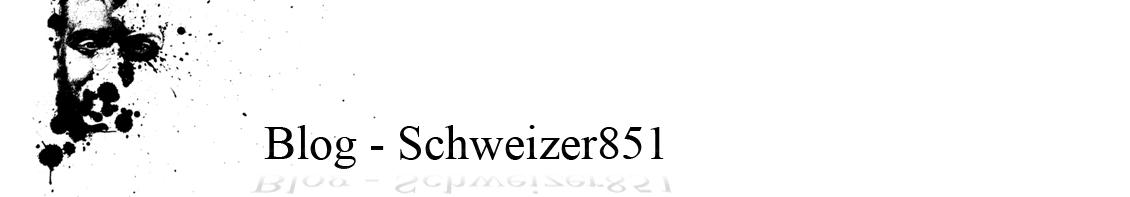 Schweizer 851