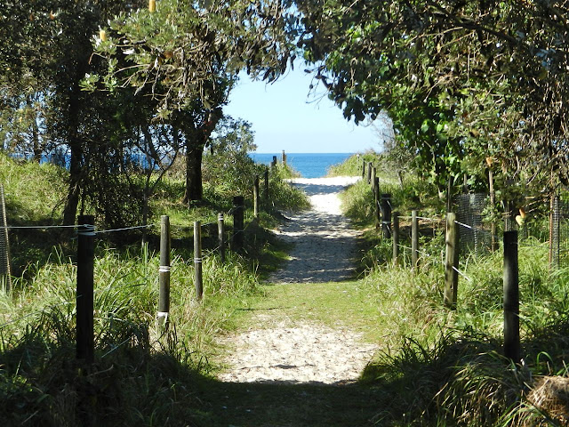 Path leading to a beach