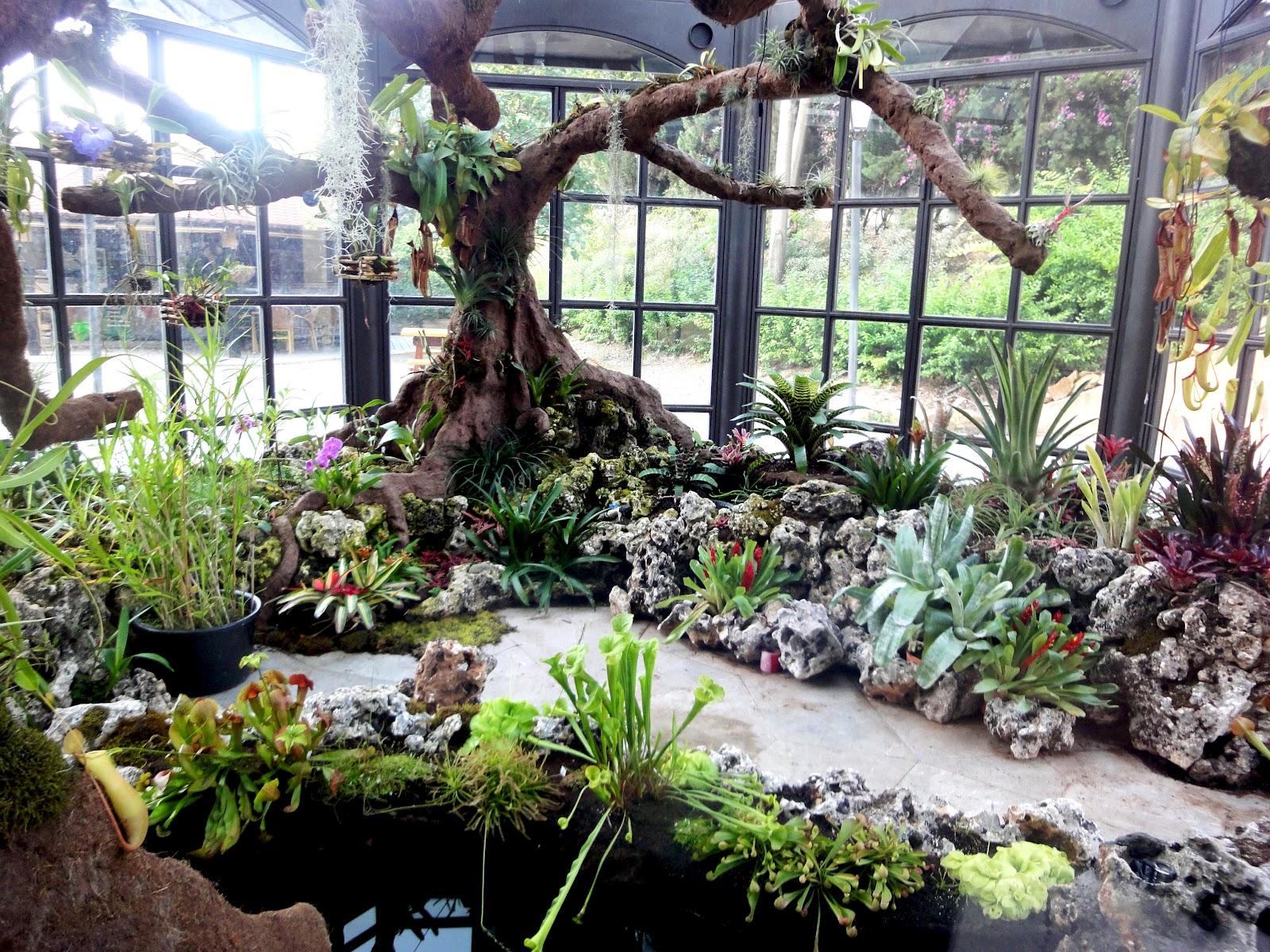 El Sello Verde: El jardín botánico