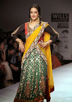 Raima Sen in saree at Wills Lifestyle India Fashion Week October 2013