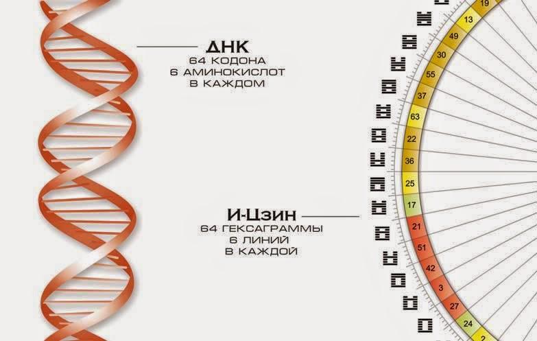 ДНК и ИЦЗИН