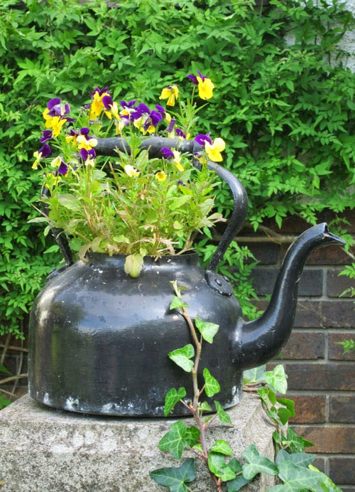 kettle planter