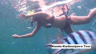 kegiatan di Karimunjawa