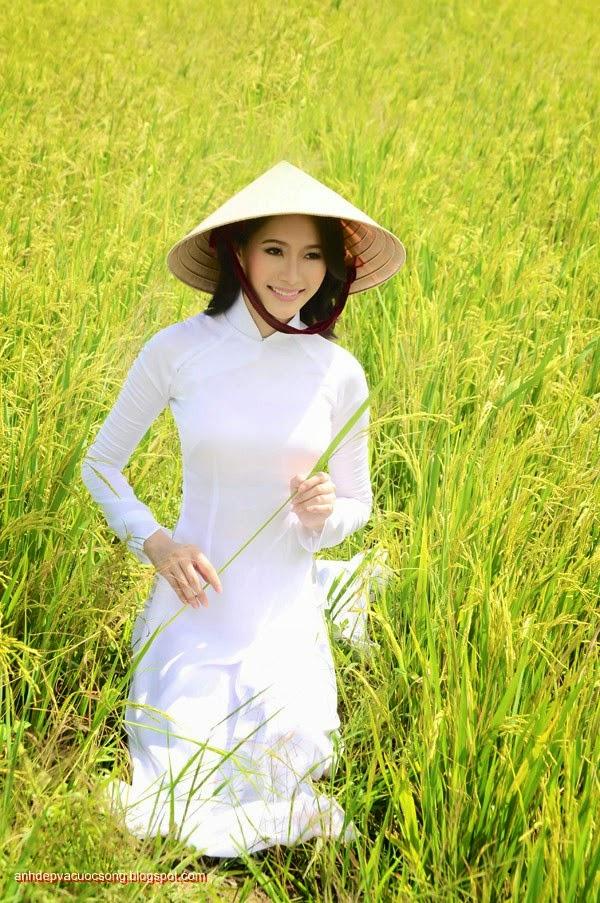 Ảnh Con Người: Người đẹp dạo chơi ngoài đồng lúa vàng 10