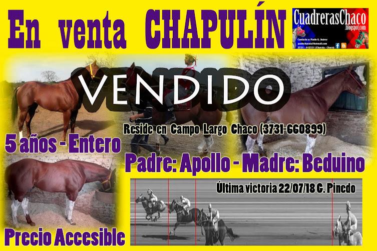 27-9-18 CHAPU VENDIDO