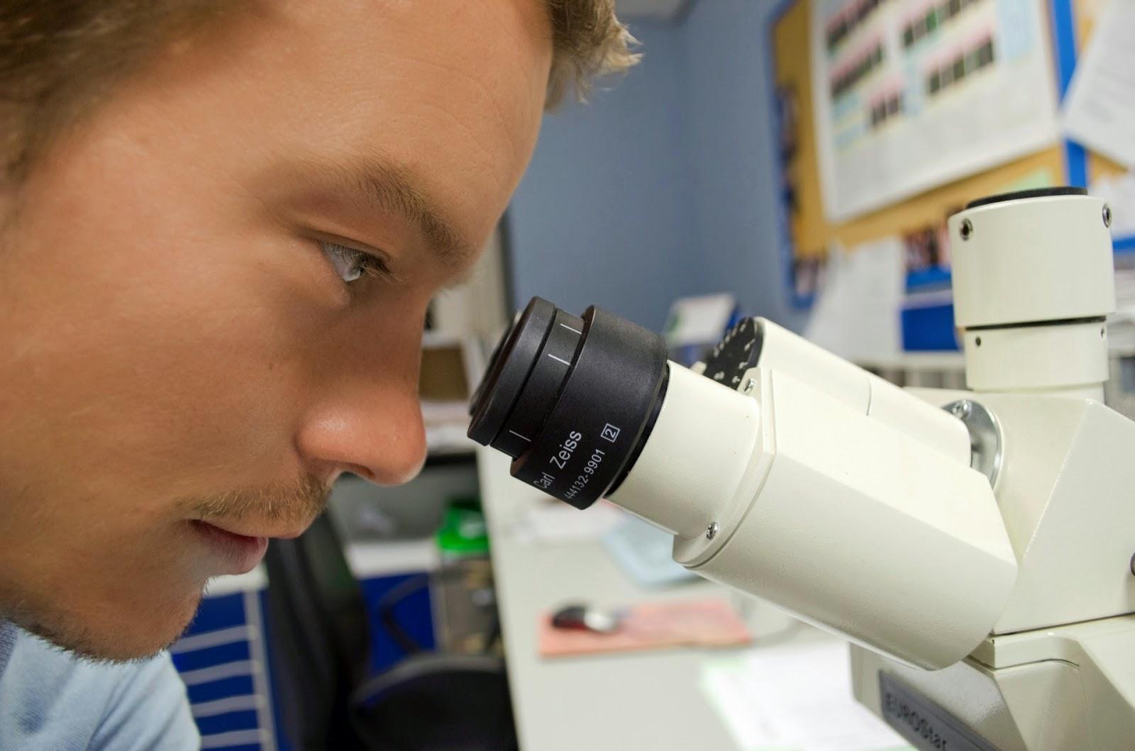 Mann schaut in ein Mikroskop