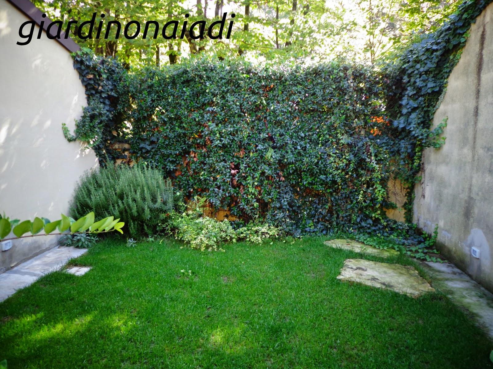 Il giardino delle naiadi c 39 ombra e ombra un giardino - Piante da giardino ombra ...