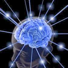 cuales son los mejores ejercicios para estimular la cabeza, el cerebro la mente y la memoria