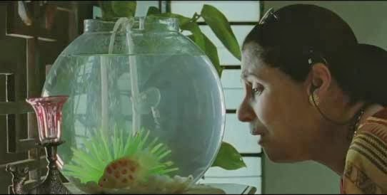 What The Fish Trailer - Dimple Kapadia