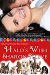 Halo's Wish!