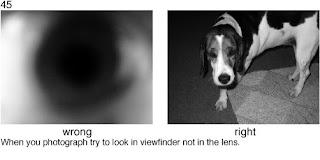 Совет 45. Компонуйте снимок через видоискатель камеры
