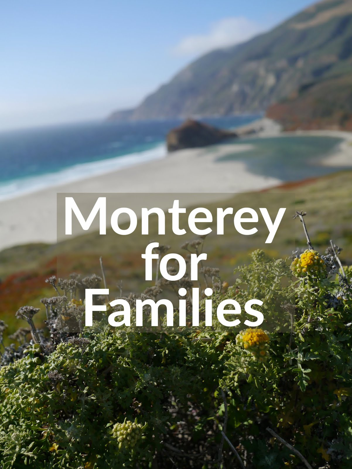 Monterey For Families