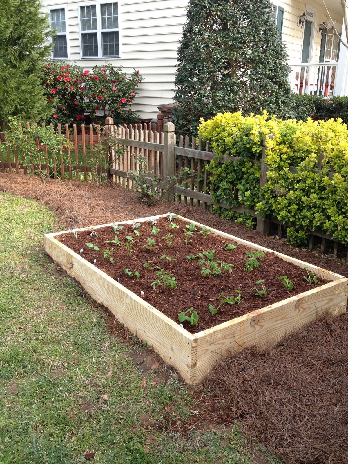 Not So Newlywed Mcgees Diy Raised Garden Bed