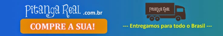 www.pitangareal.com.br