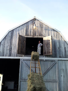 Conveyer moving a bale of hay to the barn door