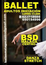 BALLET ADULTOS INICIACIÓN CURSO 2020-21, LOS LUNES EN BSD MÁLAGA CENTRO.