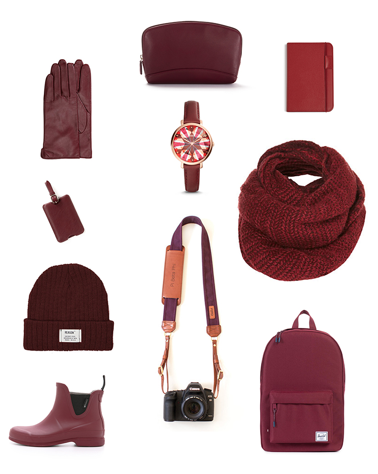 Burgundy Travel Essentials