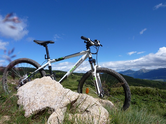 Mountain Bikes Tours What You Should Know