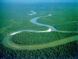 Amazon River the largest river in the world
